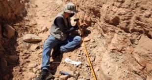 Escavação em rodovia de SP revela fragmentos de dinossauro