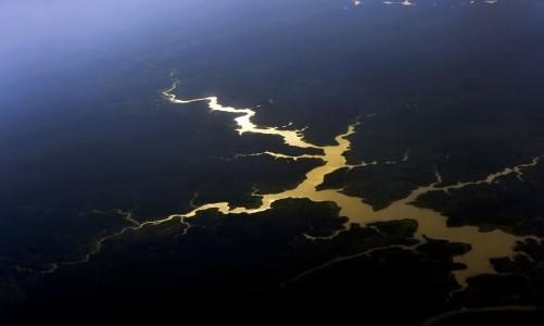 Brasil é o primeiro do mundo em potencial de descoberta de espécies