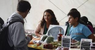 São Paulo - 1º Festival Cultural de Economia Solidária de São Paulo e 4ª Feira da Agricultura Familiar integram a primeira edição do Ecosol Fest, no Vale do Anhangabaú, região central.(Rovena Rosa/Agência Brasil)