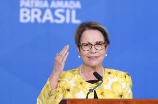 A ministra da Agricultura, Pecuária e Abastecimento, Tereza Cristina , durante  lançamento  do Plano Safra 2021/22 no Palácio do Planalto.